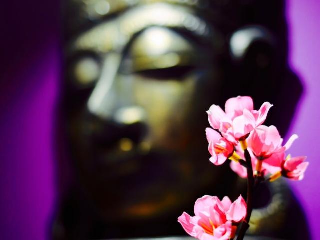 Tibetan Room Buddha